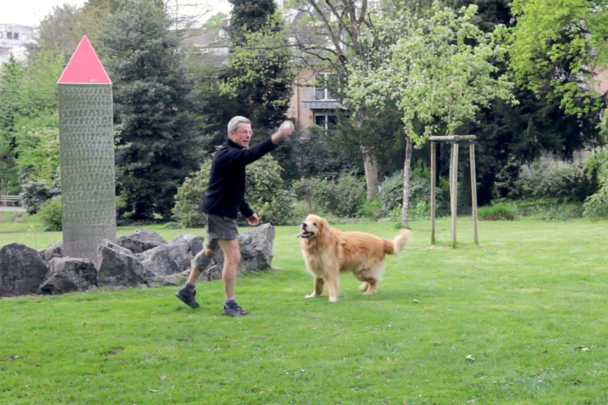 Kniearthrose Patient mit Unloader One Knieorthese, der draußen mit seinem Hund spielt